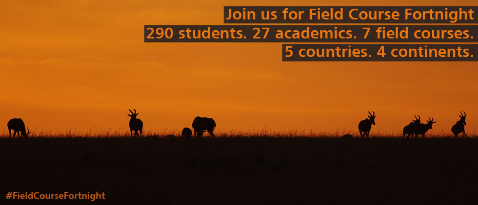 Find out more about fieldcourse fortnight